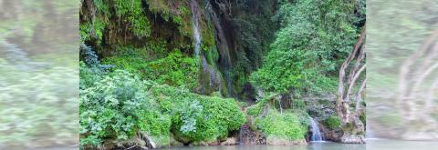 Εκδρομή στους καταρράκτες Νεμούτας - 2 Ιουνίου